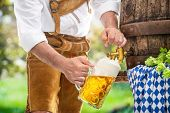 Bavarian man in leather trousers is pouring a large lager beer in tap from wooden beer barrel in the poster
