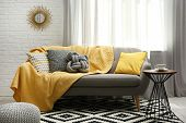 Stylish Living Room Interior With Soft Pillows And Yellow Plaid On Sofa poster