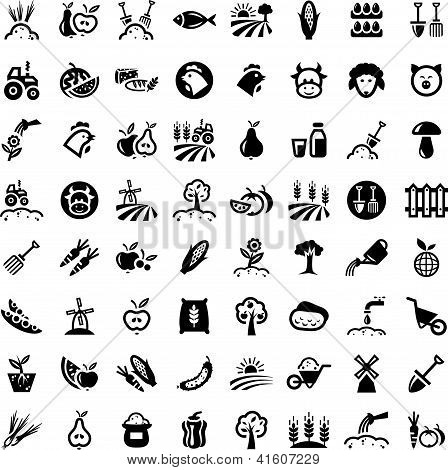 Big Agriculture Icons Set.eps