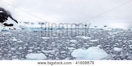 Tidewater Glacier, Paradise Bay, Antarctica