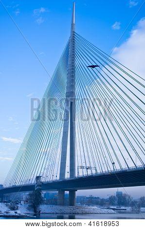 Winter flight around the cable bridge