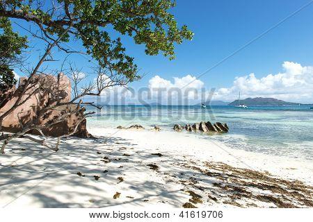 Fabulous beach In Seychelles
