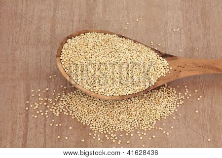 Quinoa grain in an olive wood spoon over papyrus background.