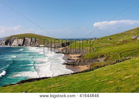 Cliffs On Dingle Peninsula, Ireland