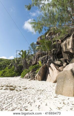 tropical beach of the island of La Digue. Seychelles