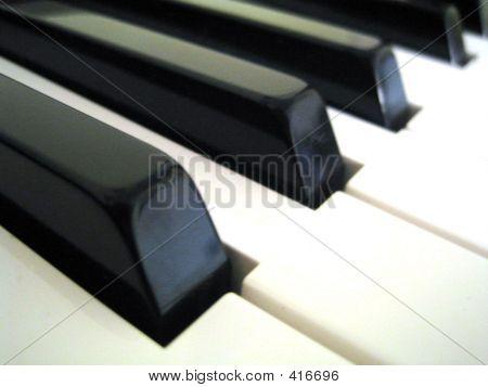 Piano Key4