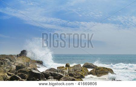 Coast Ocean