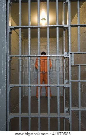Rear view of a criminal standing behind bars
