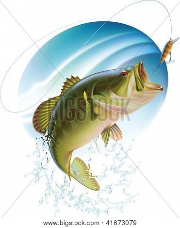 Largemouth bass is catching a bite and jumping in water spray. Raster image. Find editable version in my portfolio.