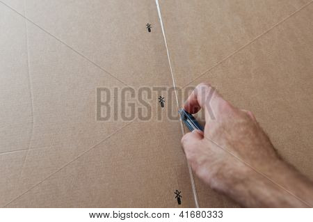 Opening A Cardboard Box
