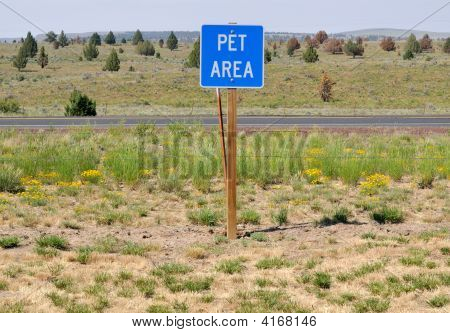 Big Pet Area
