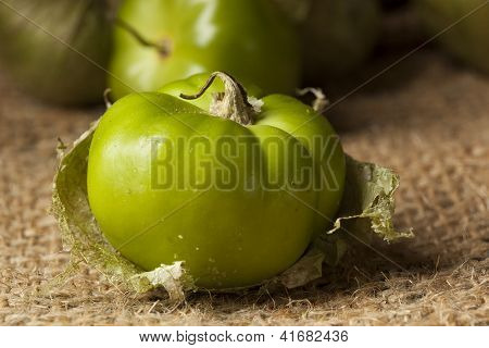 Fresh Green Organic Tomatillo