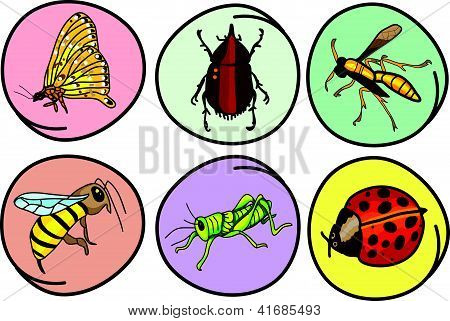 A Set Of Insects On Round Background