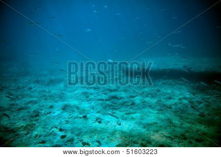 Adriatic Sea Underwater View Beneath Surface