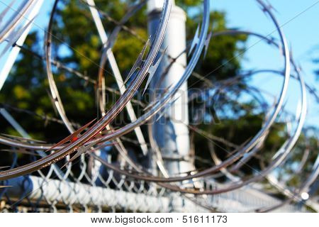 Dark zone of barbwire fences
