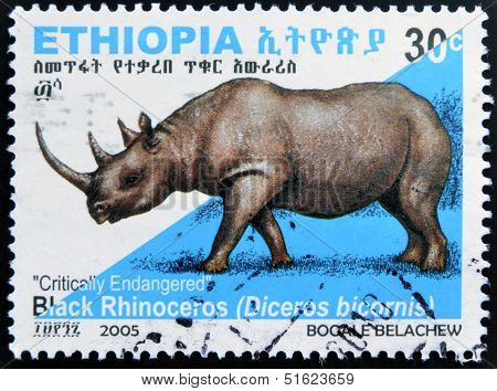 A stamp printed in Ethiopia shows Black Rhinoceros diceros bicornis