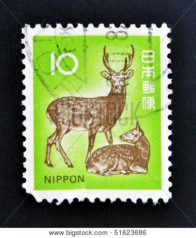 A stamp printed in Japan shows a male dear and a female dear