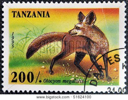 A stamp printed in Tanzania shows Bat Eared Fox Otocyon megalotis