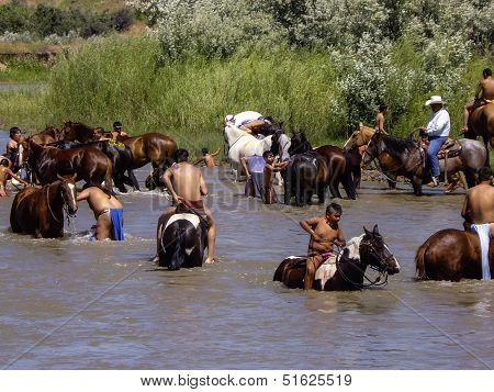 Warriors Cool Off After The Battle