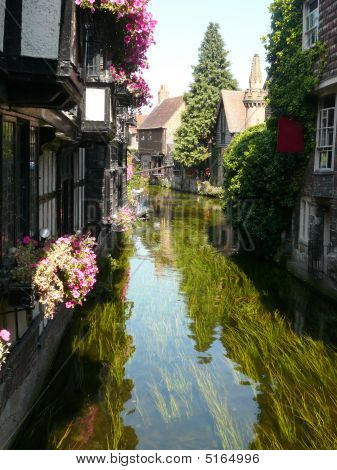 Houses Along Stream In Canterbury