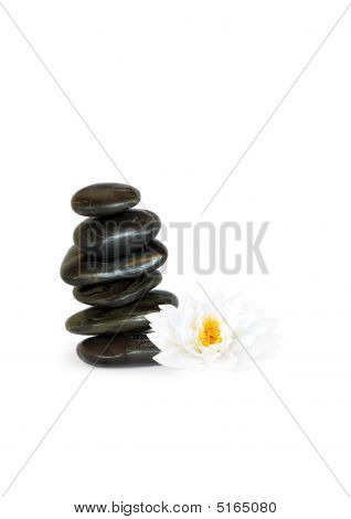 Spa Stones And Lotus Lily Flower