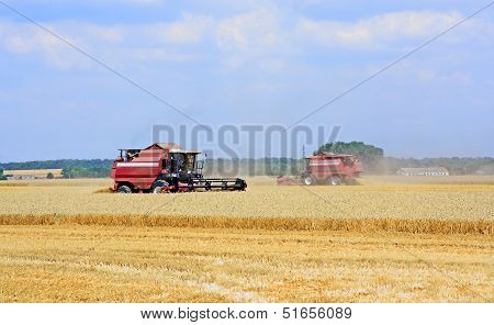 Combine Harvesters Working In The Field