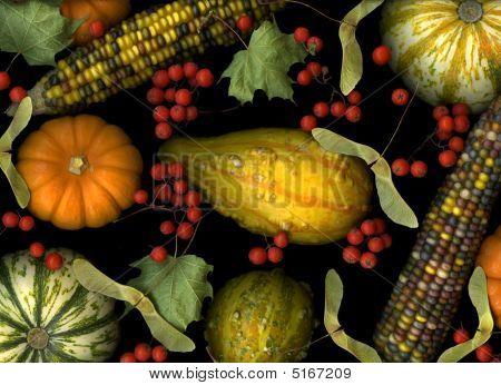 Colheita de outono