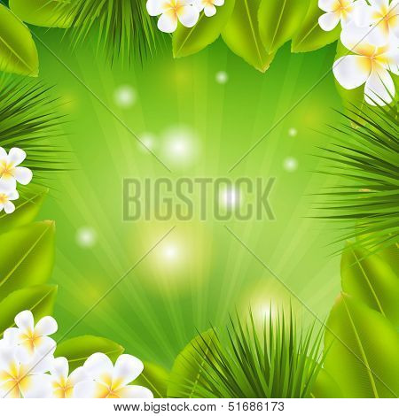 Frame With Frangipani And Sunburst With Gradient Mesh, Vector Illustration