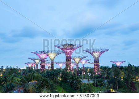SINGAPORE-FEB 14: A Night view of The Supertree Grove at Gardens by the Bay on Feb 14, 2014 in Singapore. Spanning 101 hectares of reclaimed land in central Singapore, adjacent to Marina Reservoir.