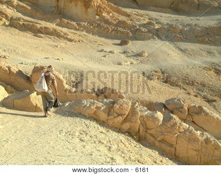 Man In Desert poster
