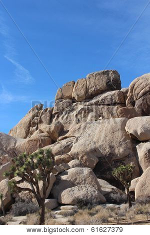 Joshua Tree National Park California