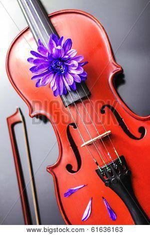 Artistic Poetic Violin