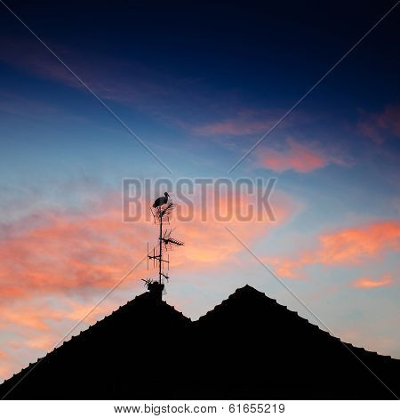 Stork Silhouette Standing On Roof