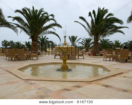 Fountain And Palm Trees