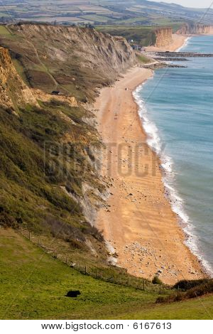 Jurassic Coastline From Golden Cap