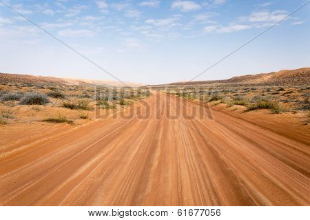 Road through a desert