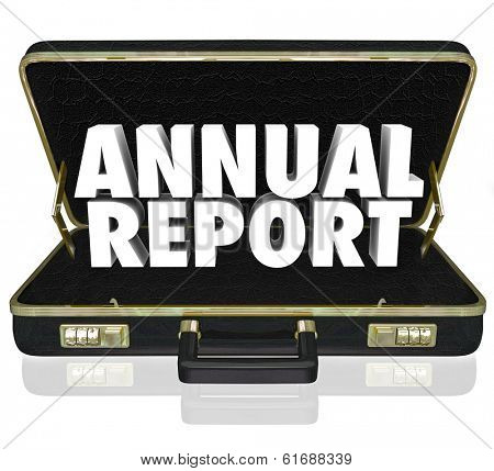 Annual Report Words Business Briefcase Financial Profit Results