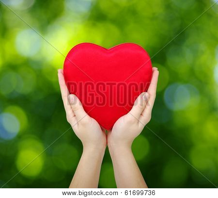 Red heart in hands on green background