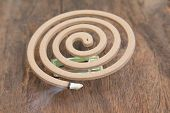 foto of mosquito repellent  - Burning mosquito coil for Insect repellent and mosquito - JPG