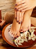 image of pedicure  - Closeup photo of a female feet at spa salon on pedicure procedure - JPG