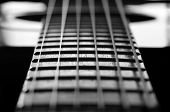 pic of fret  - Closeup detail of steel guitar strings and frets for making music - JPG