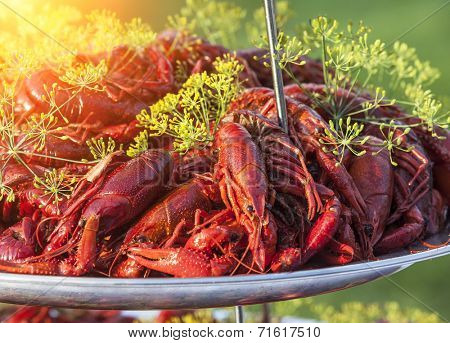 Boiled or steamed crawfish