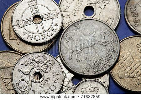 Coins of Norway. Norwegian fjord horse and fowl bird depicted in Norwegian one krone coins.