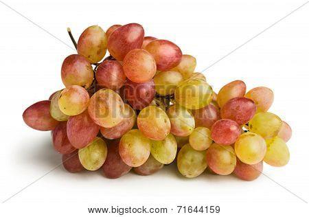 Ripe Pink Grapes