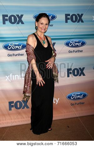 LOS ANGELES - SEP 8:  Beth Grant at the 2014 FOX Fall Eco-Casino at The Bungalow on September 8, 2014 in Santa Monica, CA