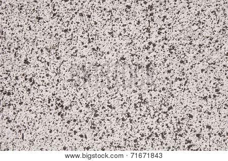 Gray Coat With Black Spots Closeup