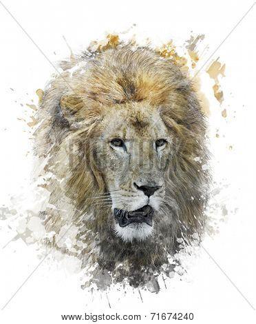 Watercolor Digital Painting Of Lion Head
