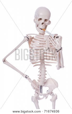 Skeleton smoking cigarette isolated on white