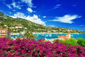stock photo of azalea  - french reviera view of luxury resort and bay of Villefranche - JPG