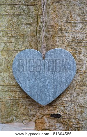 wood texture love heart on tree trunk
